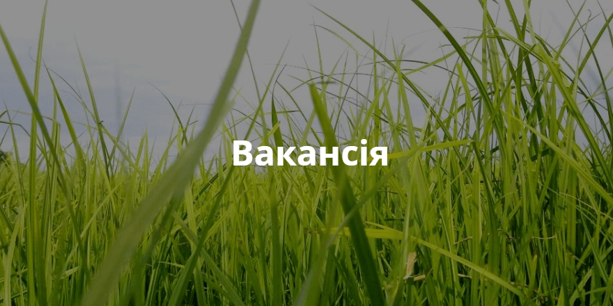 Вакансія