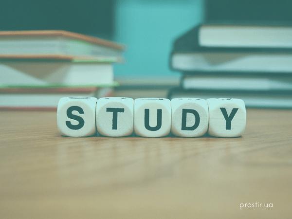 навчання стипендія study