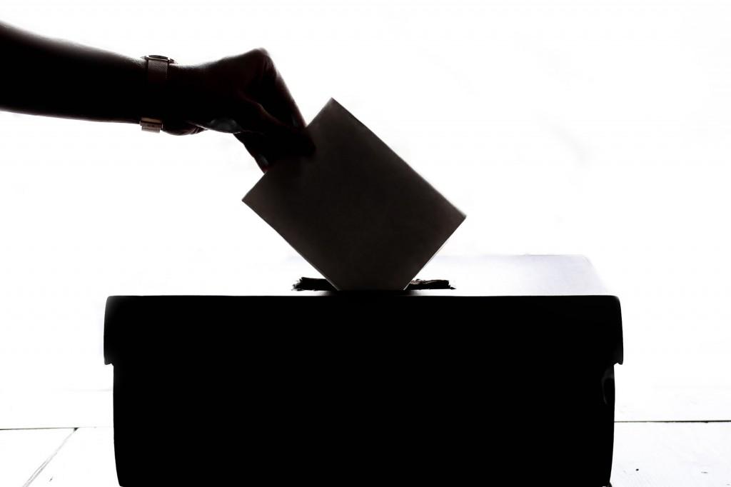 vote голосування вибори