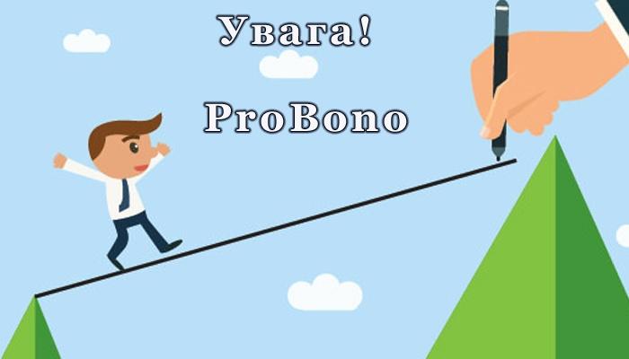 ProBono «Менторська підтримка неприбуткової організації»