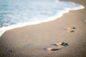 beach-salt-water-sand-17727