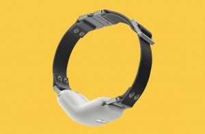 rawr-smart-collar