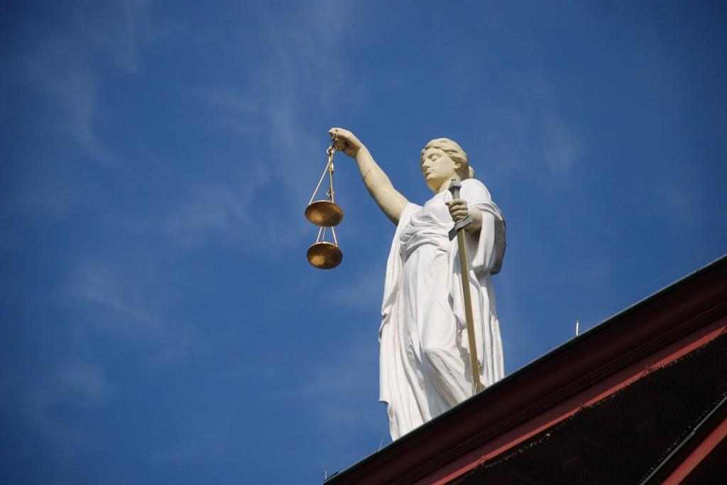case-law-677940_1280 (1)