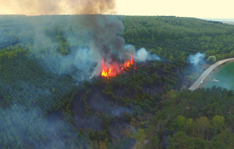 Пожежа у Дубенському лісгоспі 29.04.2020. Фото з квадрокоптера