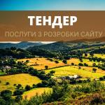 ТЕНДЕР_002