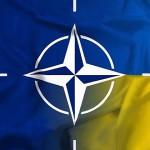 img_VUM_Nato_main