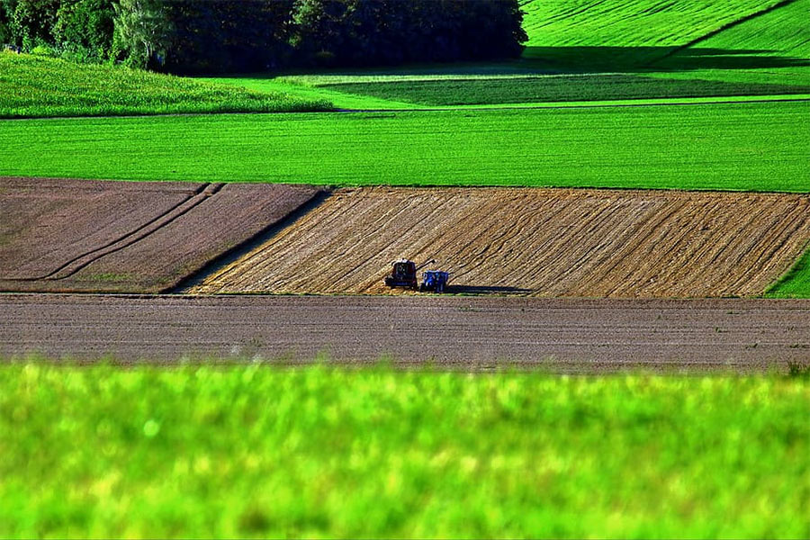 intensive-agriculture