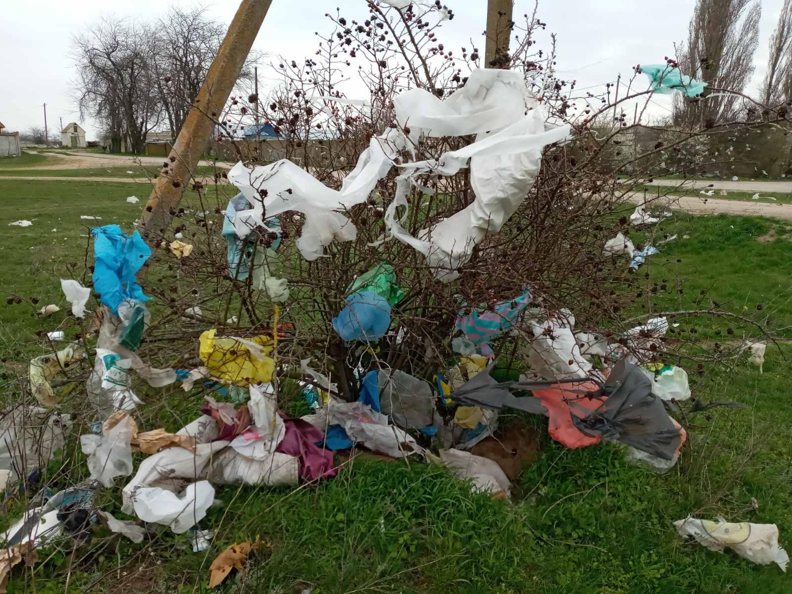 Фото 1. Навколишнє середовище у Станіславській ОТГ до початку реалізації проєкту