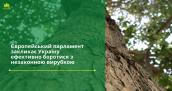 Європейський парламент закликає Україну ефективно боротися з незаконною вирубкою
