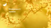 NEW_slider_ГП(85)