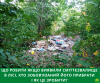 прибрати сміття в лісі