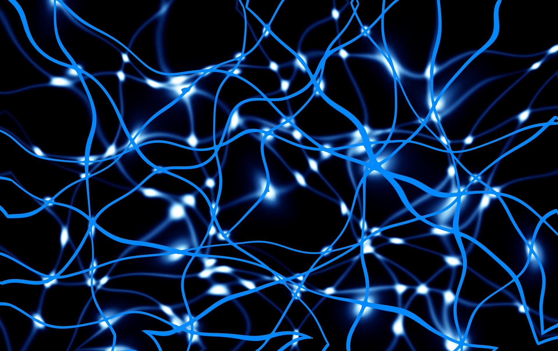 network-3492384_1920